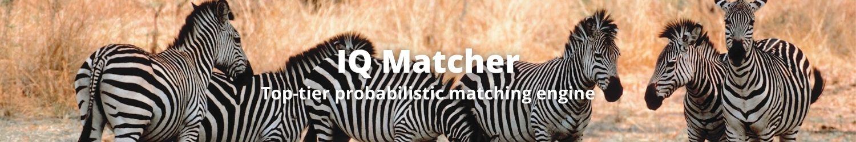 IQ Matcher